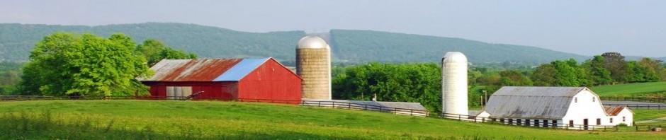 Pogue Mahone Farm